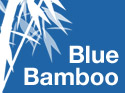 Blue Bamboo - iPhone Application Development